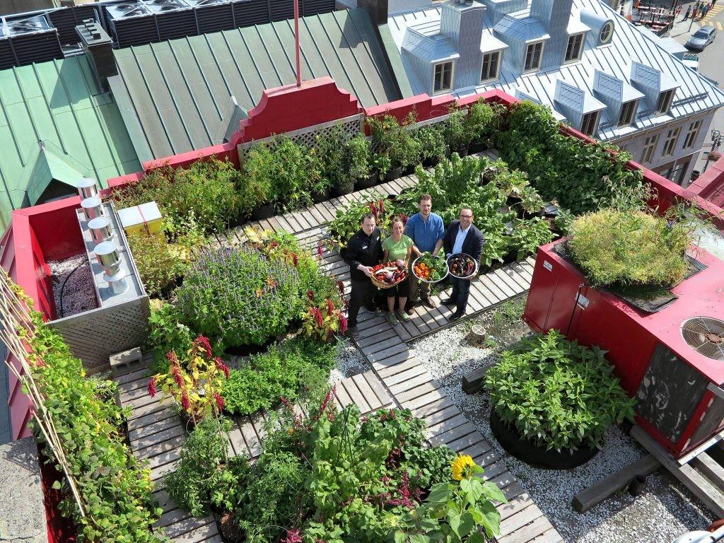 am nager un toit terrasse ikare france. Black Bedroom Furniture Sets. Home Design Ideas