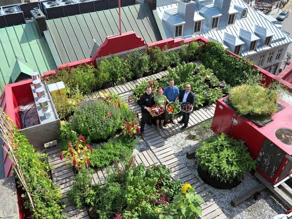 Aménager un toit terrasse - Ikare France